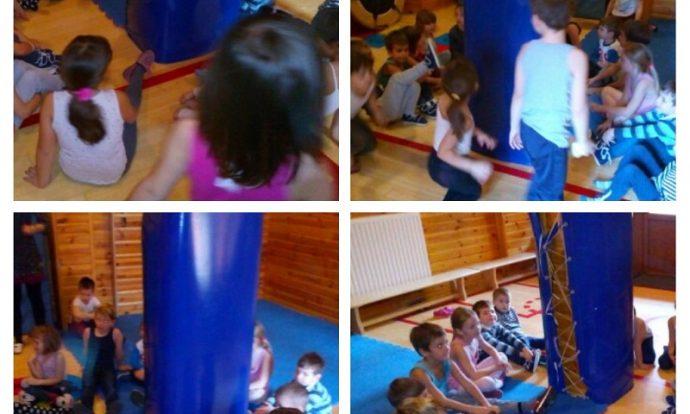 Ribice - igre u dvorani i na otvorenom, usvajanje elementarnih igara, povezivanje tjelesnih i glazbenih aktivnosti, razvoj koordinacije, ravnoteže i suradnje