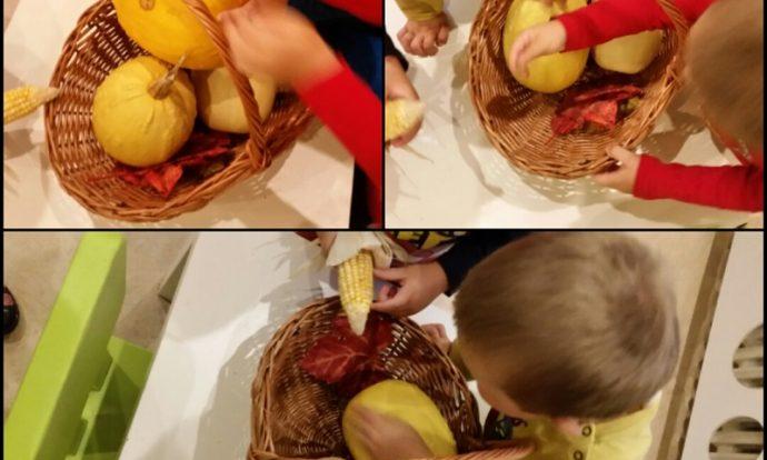 Leptirići - promatranje jesenskih plodova, oblik, boja, miris, manipuliranje plodovima