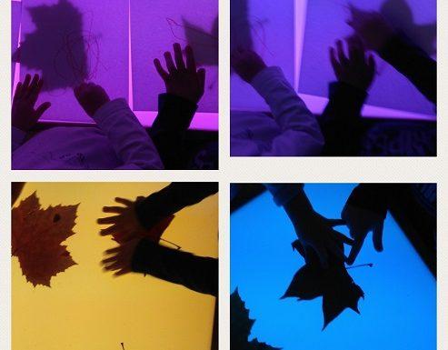 Zečići - promatranje strukture lišća na svjetlećem stolu, razvoj spoznaje, vizualne percepcije i učenja boja