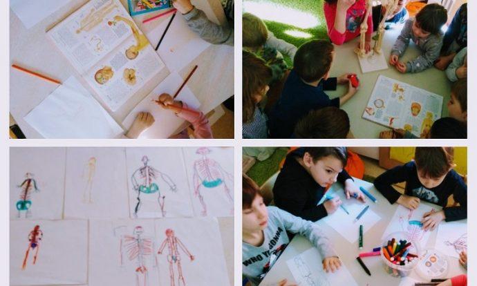 Ribice - Ljudsko tijelo, proučavanje enciklopedije, poticanje na nova saznanja, razvoj pojma o sebi, razgovor o mišićima, osjetilima