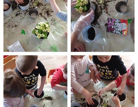Zečići - sađenje i sijanje cvijeća u sklopu Programa odgoja za održivi razvoj, poticanje empatije i brige za biljke