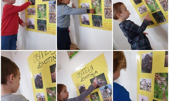 Zečići - upoznavanje obitelji životinja pomoću plakata, poticaj razvoja suradničkog učenja, koncentracije i empatije