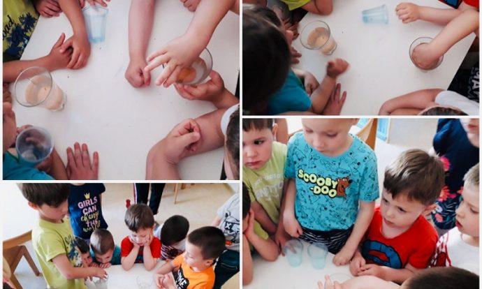 Leptirići - pokus sa slatkom i slanom vodom, razvoj logičkog mišljenja i zaključivanja