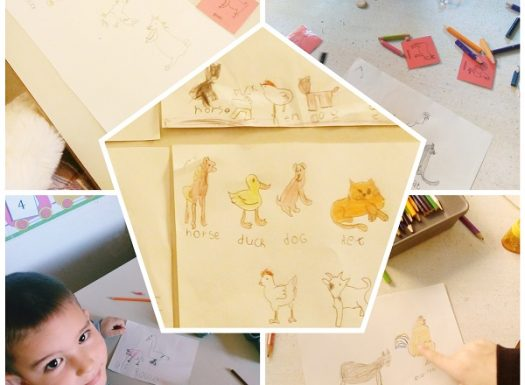 Ribice - Animals, draw, color and write the name of an animal by looking at the picture cards