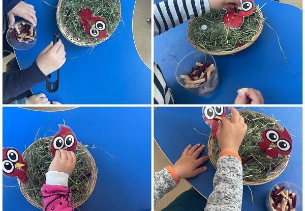 Žirafice - stolno-manipulativna aktivnost hranjenja ptica; razvoj okulomotorike i pincetnog hvata te poticanje senzibiliteta prema životinjama
