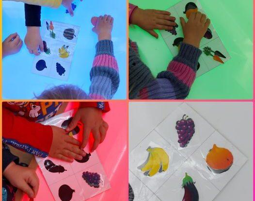 Žirafice -stolno-manipulativna aktivnost povezivanja voća i povrća, imenovanje i povezivanje plodova s njihovom sjenom te sortiranje u voće ili povrće