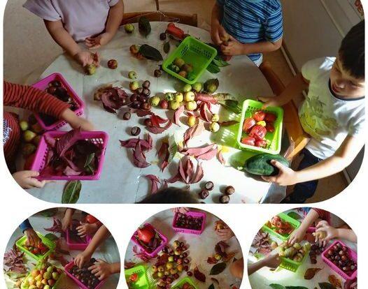Leptirići - Istraživanje jesenskih plodova,poticanje na prepoznavanje različitih oblika, pojmova i zapažanja